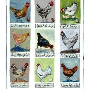 Chickens-A2-sized