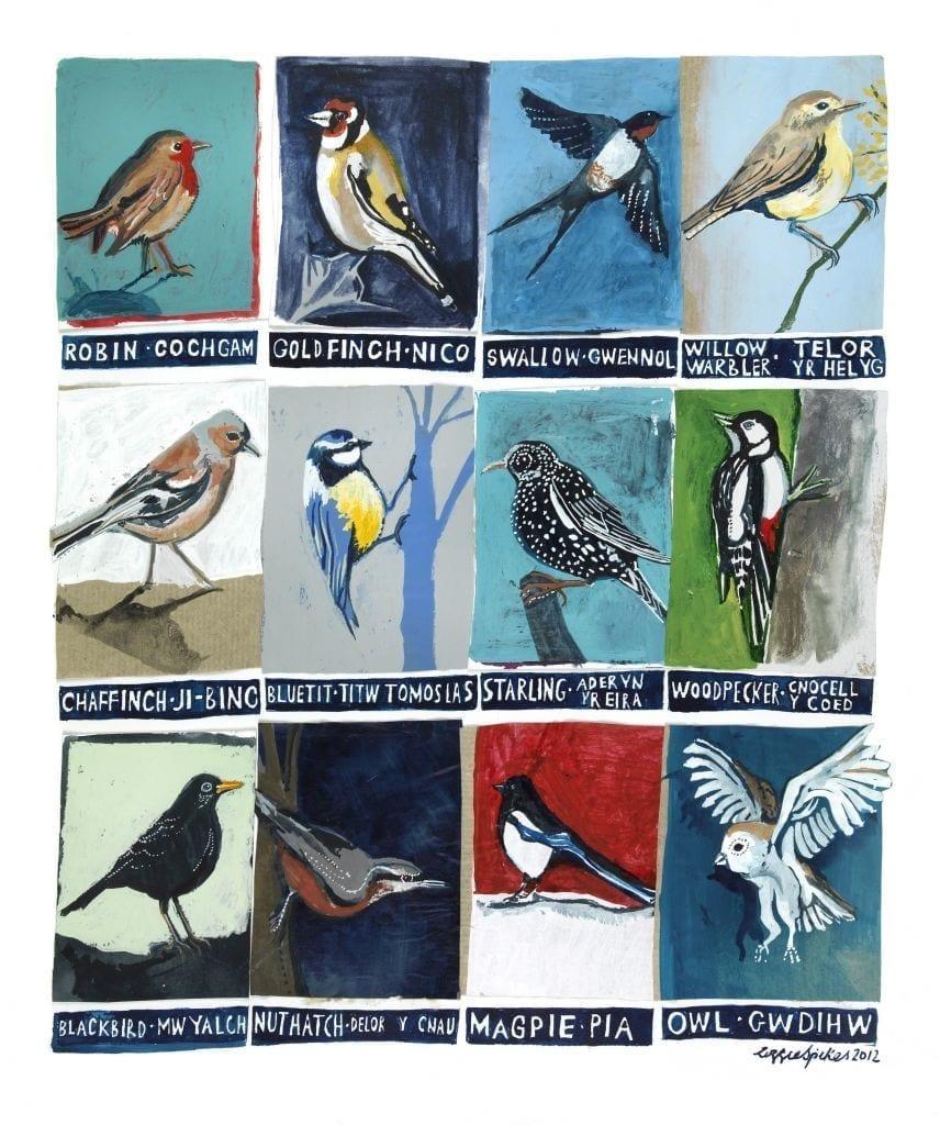 Birds Framed Poster Print Driftwood Designs