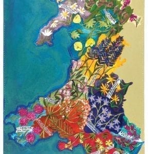 blodau cymru welsh flowers